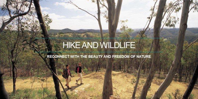 Cleland Hike and Wildlife