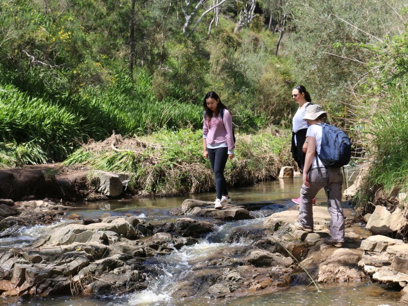 Guided bushwalk at Morialta Conservation Park