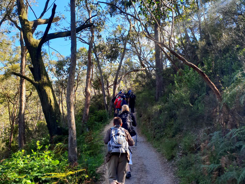 Private Adelaide Bushwalk Tour