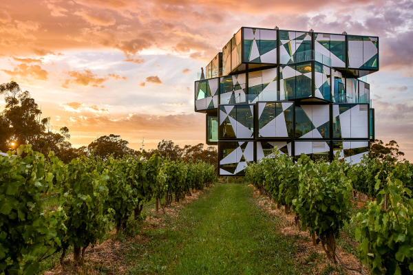 d'Arenberg Winery experience tour in McLaren Vale wine region