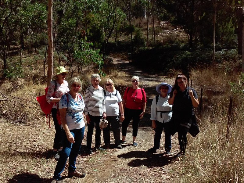 Bushwalking group at Morialta - Photo: Pure SA