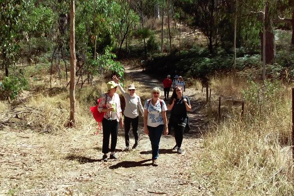 Bushwalk group at Morialta - Photo: Pure SA