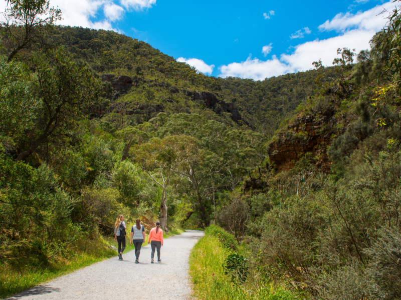 walking tour through hills in adelaide